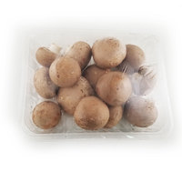 Organic Swiss Brown Mushroom - 500g - China*