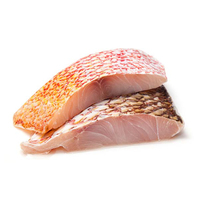 Frozen Malaysia Red Snapper Fillet