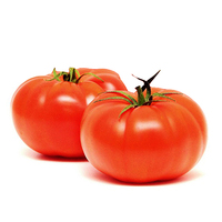 Dutch Beef Tomato (2pcs)