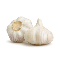 Organic Garlic 100g - Holland*