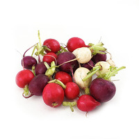 Mix Radish Round 500g - Holland*