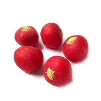 Dutch Red Radish 125g*