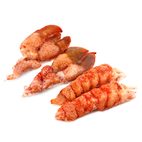 Frozen MSC Raw Lobster Tails & Claw Meat 140-170g 2 packs per Combo - Canada*