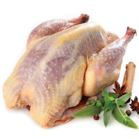 Frozen Donald Russell Wild Whole Pheasant 750g*