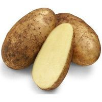 Organic Dutch Cream Potatoes 1kg - AUS*