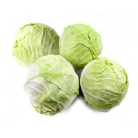French White Baby Cabbage (4pcs)*