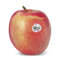 Organic Pink Lady Apples 1kg - AUS*