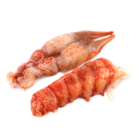 Frozen MSC Raw Lobster Tails & Claw Meat 140-170g - Canada*